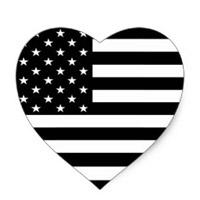 Amerikkka Taught Me